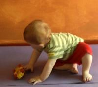 Infant getting up into crawling potition from sitting
